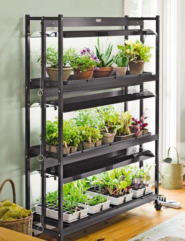 The harried homemaker preps diy seed starting set up for Indoor garden design uk
