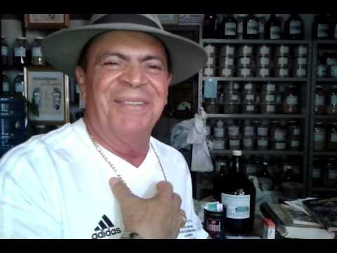 Domingos da Amazon Ervas / Gama Feira Permanente