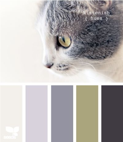 http://design-seeds.com/index.php/home/entry/kittenish-hues