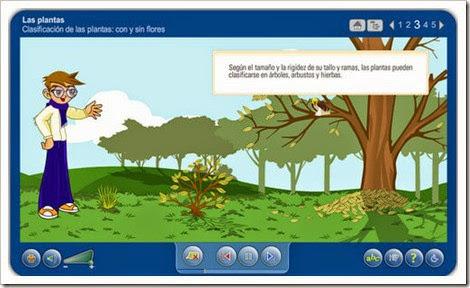 http://www.juntadeandalucia.es/averroes/carambolo/WEB%20JCLIC2/Agrega/Medio/Las%20plantas/contenido/cm07_oa01_es/index.html