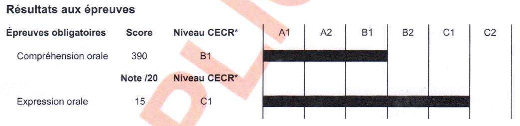 Detran pr resultado exame pratico