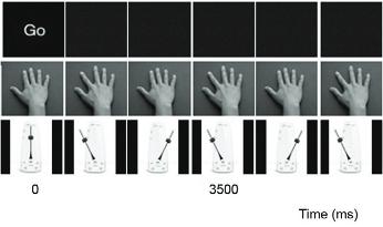 人差し指のうごき