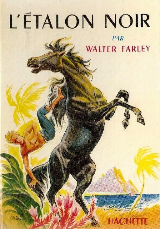 Roman emprunté à l'école par Jeanne Sélène auteur de fantasy