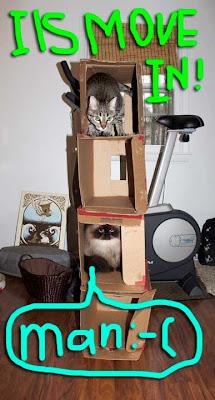 cat-castle-02
