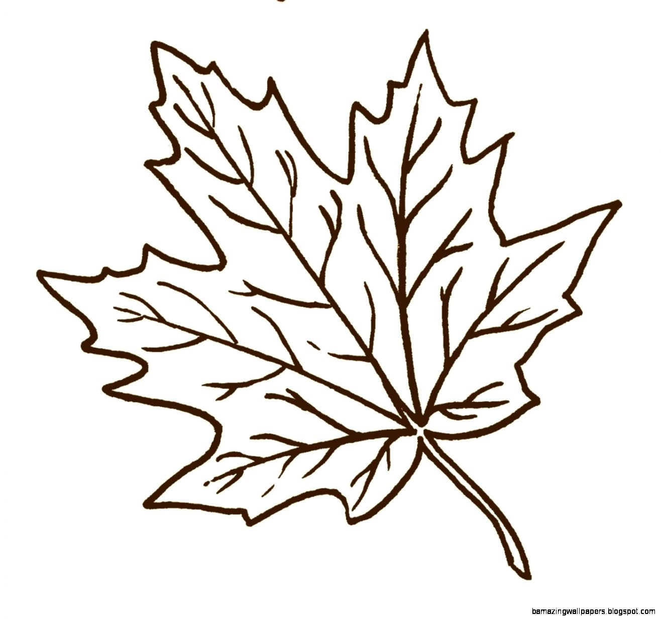 Autumn Borders Black And White Clipart   Clipart Kid