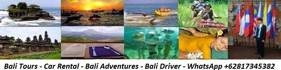 Bali Driver Tour Guide - Trip in Bali