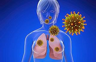 Mengenal Virus MERS