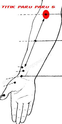 Titik Akupuntur Paru Paru 5