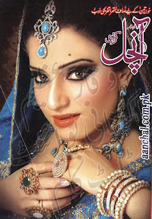 Aanchal Digest November 2013 Online Reading