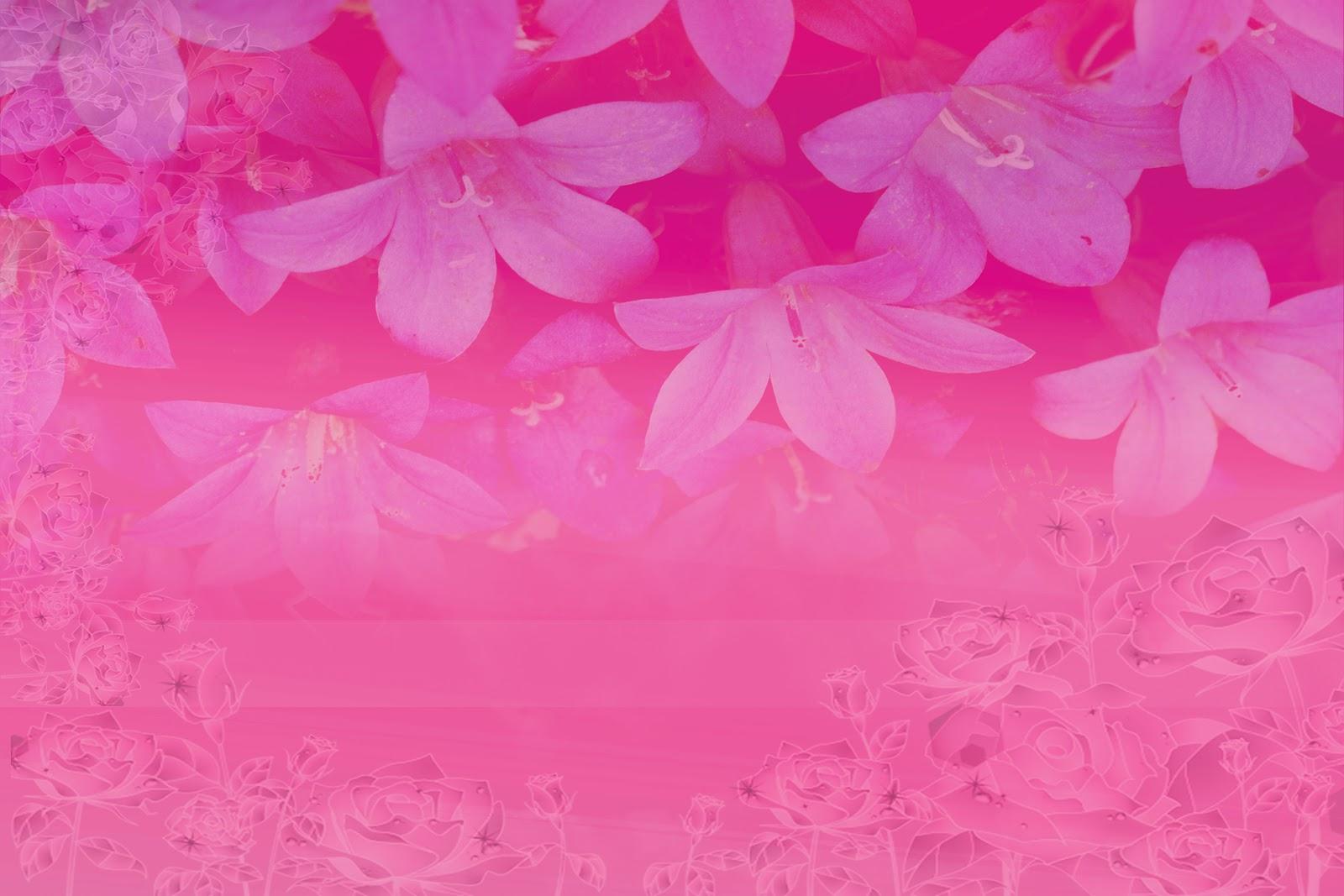 http://3.bp.blogspot.com/-onM-NinuBuA/T_cebdOd9II/AAAAAAAABE0/jTt9n1FlNXw/s1600/1.jpg