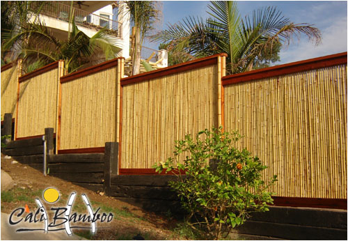 Bamboo Fencing5