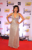 59th Idea Filmfare Awards function Gallery 2013-thumbnail-18