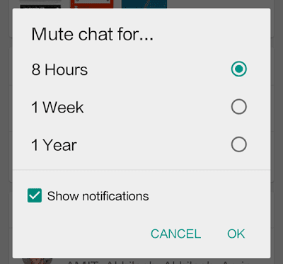 WhatsApp Mute individual contacts