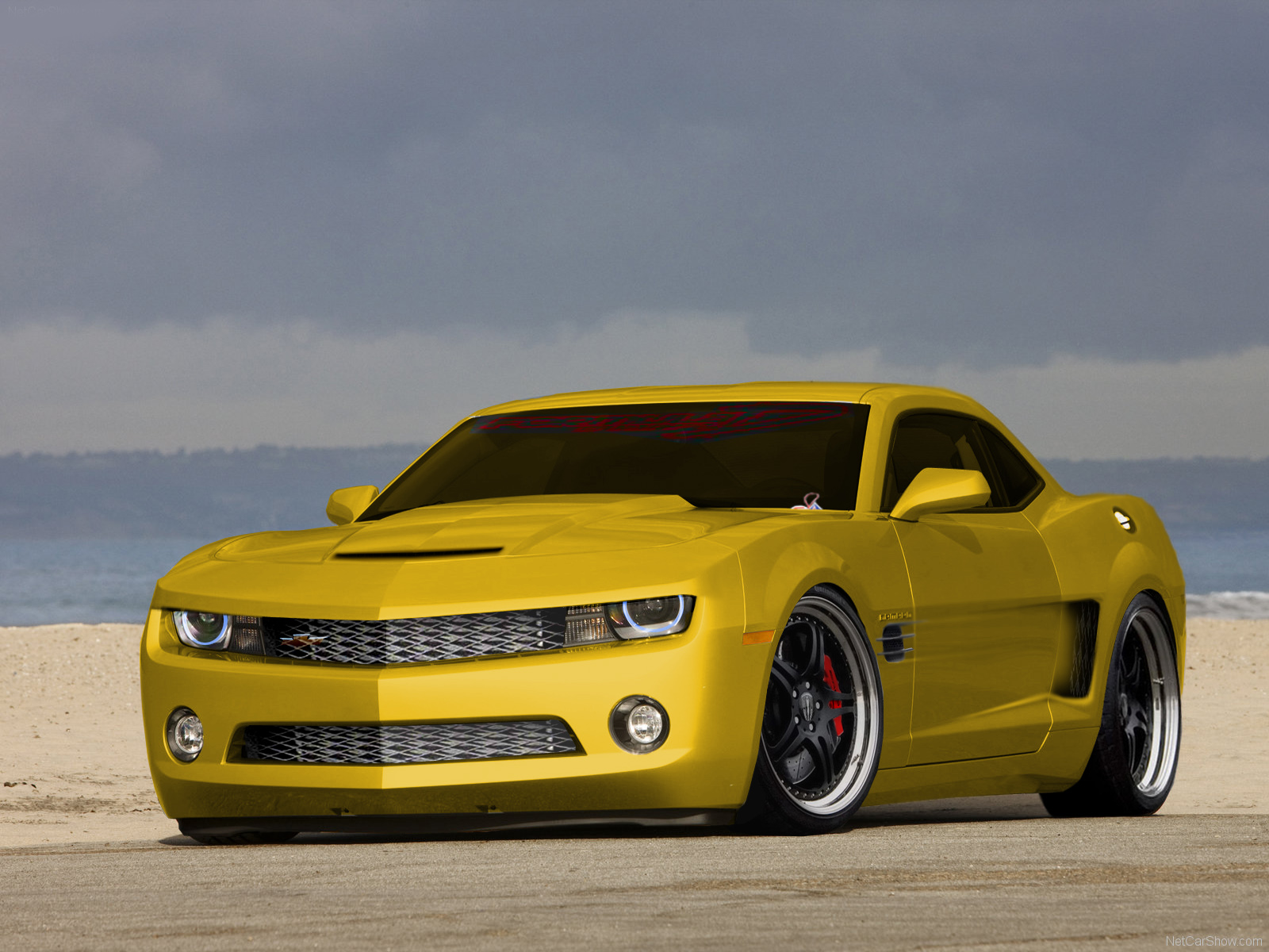Speedo Car 2010 Chevrolet Camaro New Cars Car Reviews