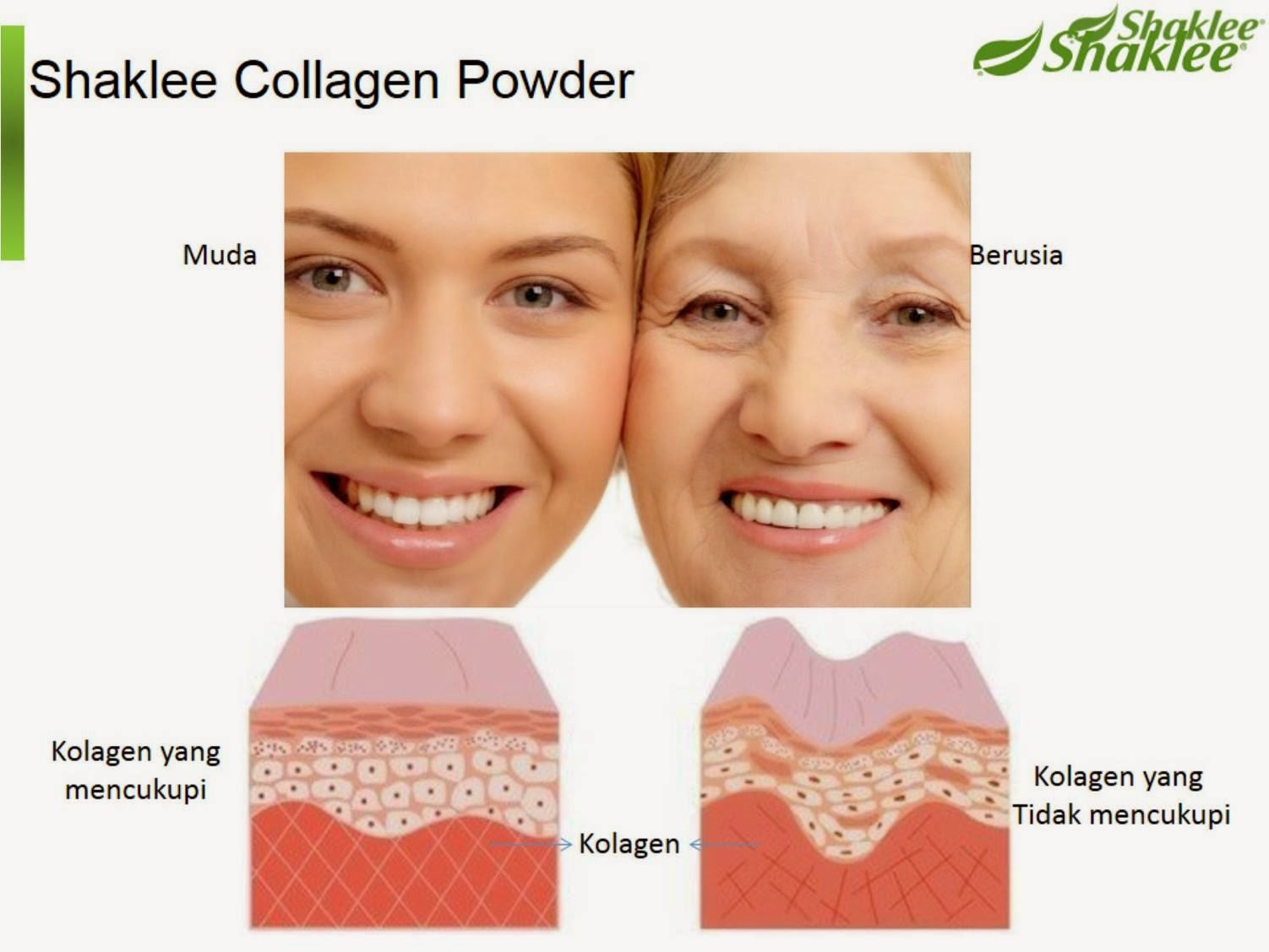 shaklee kolagen powder