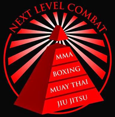 Next Level Combat