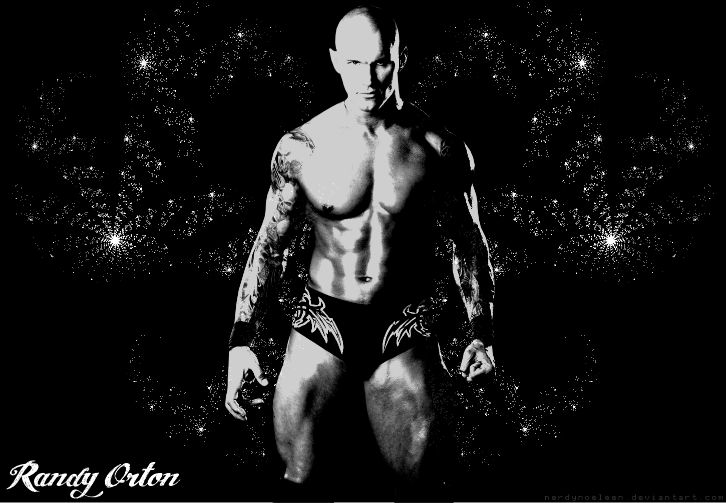 hd wallpapers randy orton hd wallpapers randy orton hd wallpapers
