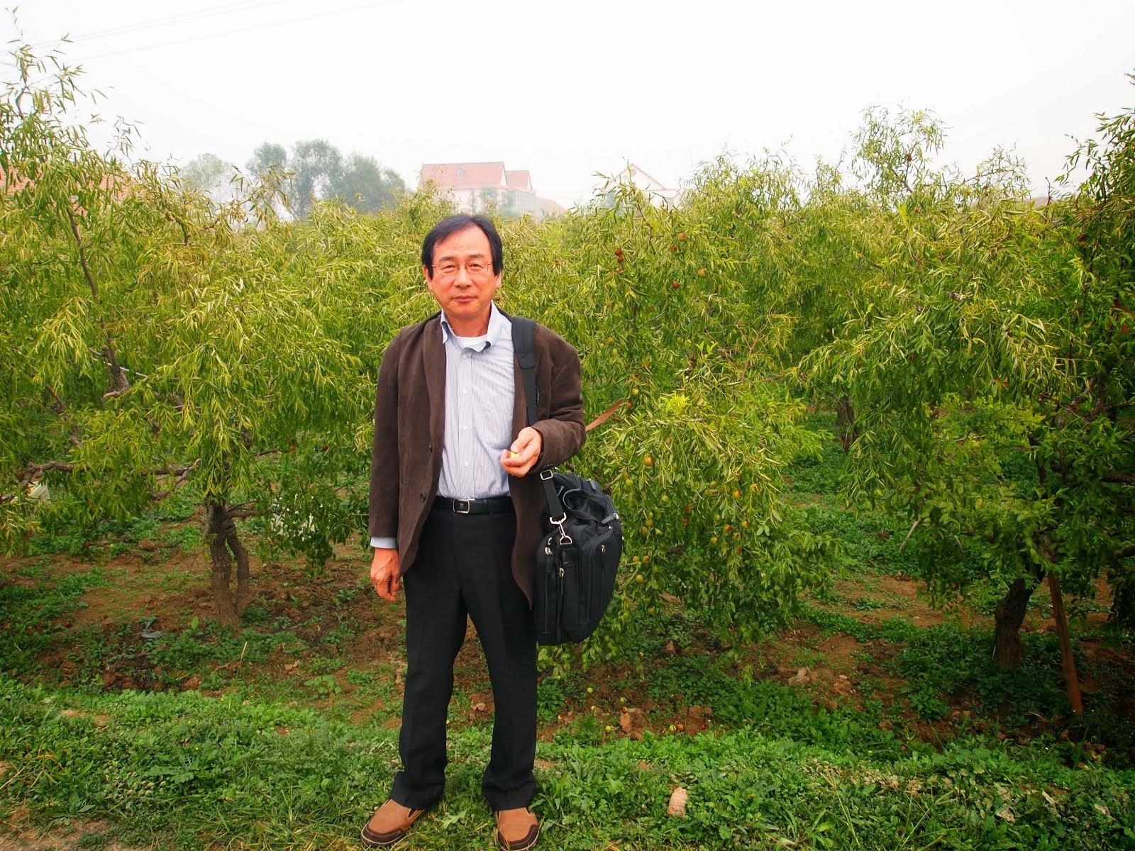 冬ナツメ畑にて。2012年10月。