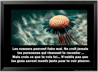 Citation rumeur en image