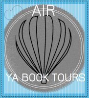 Air Tours