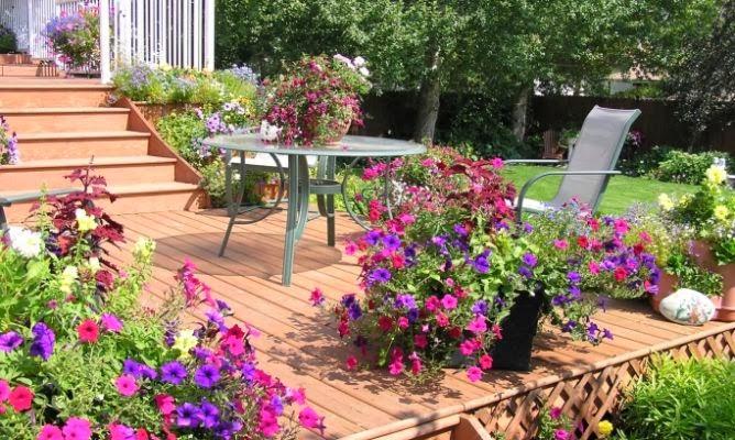 decorar um jardim: Jardins: plantas, flores e jardinagem : Dicas para decorar um jardim