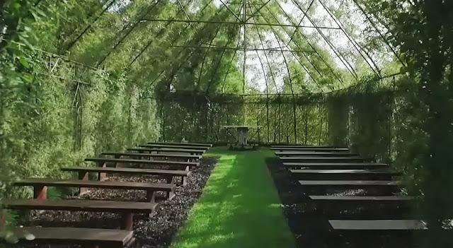 Tree church New Zealand
