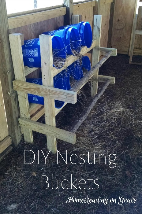how to train chickens to lay in a nesting box