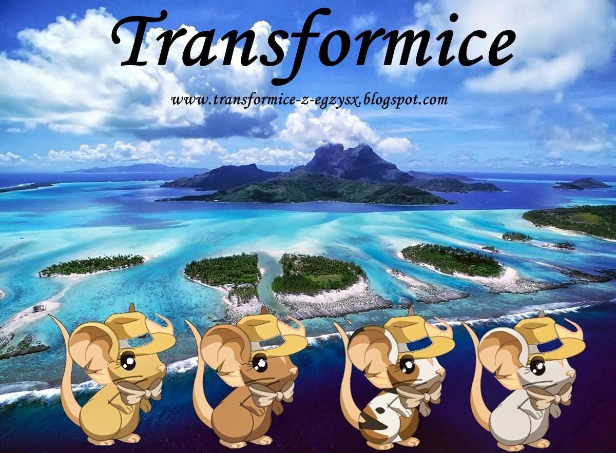 Transformice !