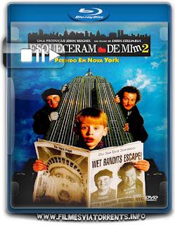 Esqueceram de Mim 2 - Perdido em Nova York Torrent – BluRay Rip 720p | 1080p Dual Áudio 5.1