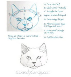 Draw A Cat Portrait