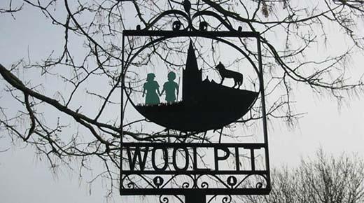 Los Niños Verdes de Woolpit: Una leyenda del siglo 12 de visitantes de otro mundo