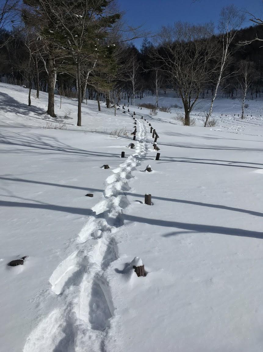 冬場の体力維持のためスノーシュー