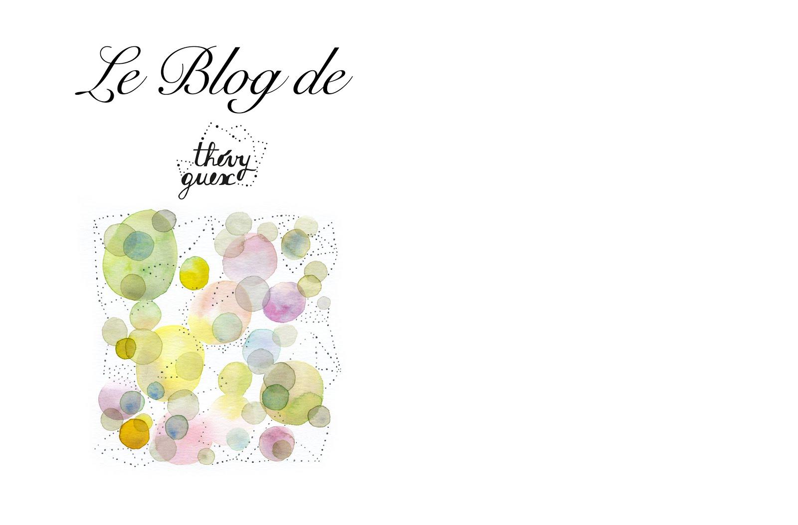 le blog de Thévy !