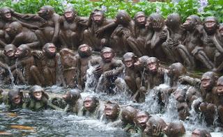 monyet mandi