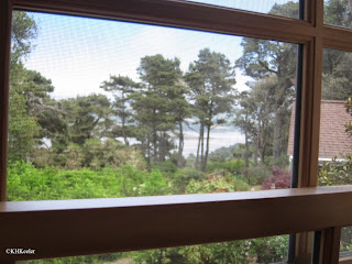 View of Tomales Bay out the window