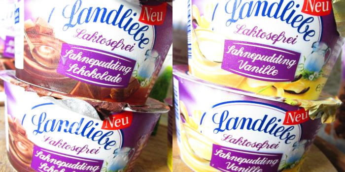 Landliebe Laktosefrei - Sahnepudding Schokolade & Vanille