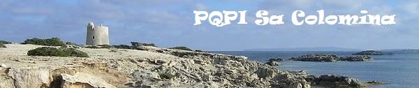 PQPI Informàtica 2013-2014 - IES Sa Colomina