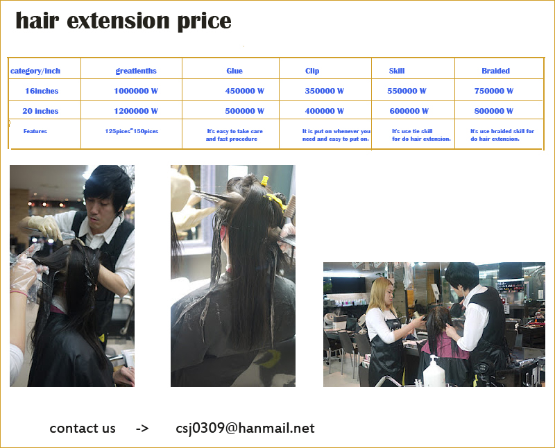 Price Of Hair Extensions Beauty Salon In Korea Seoul Suins Hair