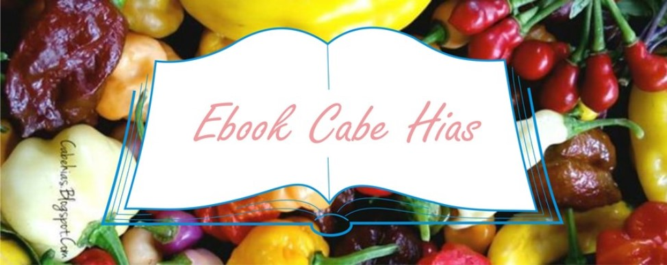 ebook cabe hias