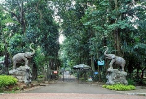 Taman Suaka Margasatwa Ragunan
