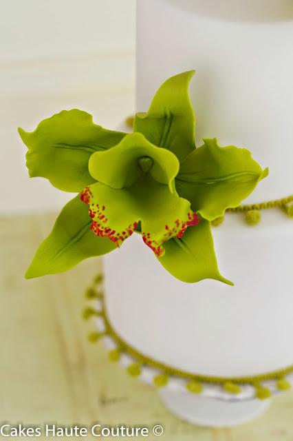 orquidea cattleya de azúcar