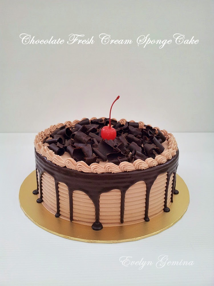 Chocolate Fresh Cream Spongecake / 1kg