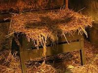 JESUS NASCE EM NOSSOS CORAÇÕES