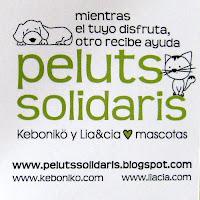 Peluts Solidaris