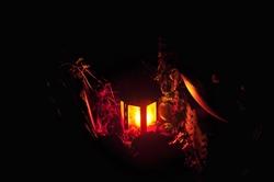 Ein Licht zu Allerseelen...