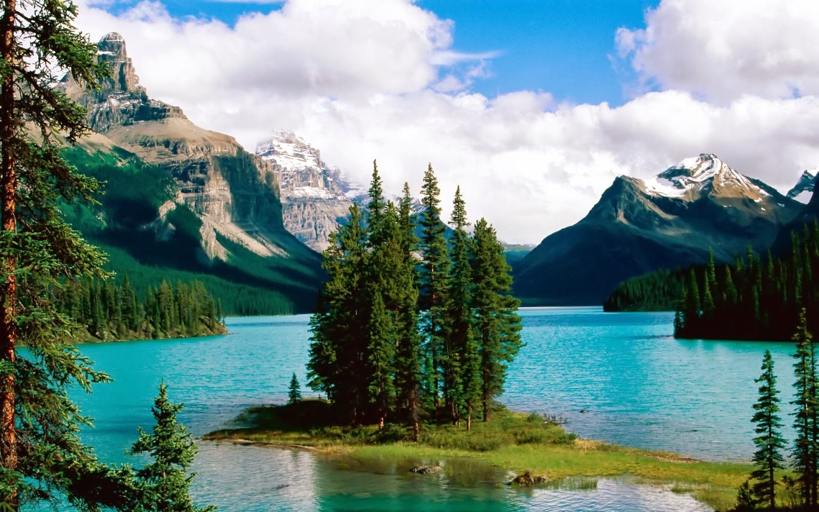 Beautiful Places Nature Lake Tree Images HD Wallpapers Free Downloads