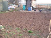 land dug over with manure ready for planting new vegetables