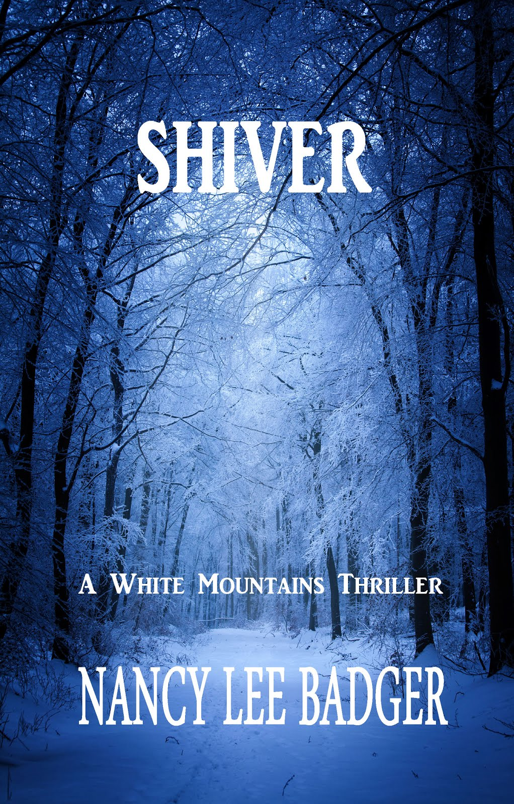 Bk#1 White Mountains Thrillers