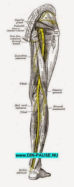 nervesmerter alternativ behandling