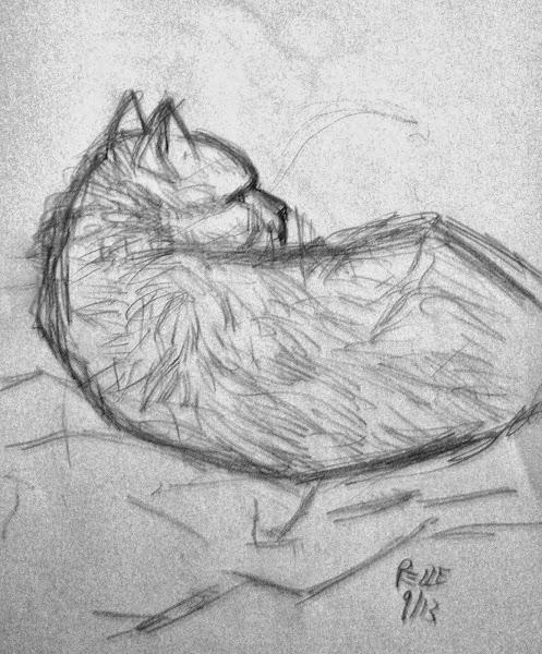 Miao Gat